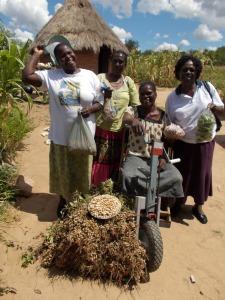 ZimbabweTambu with MP(holding okra.xxx bag) neighbor and Council official Wedza Zim Mar2013