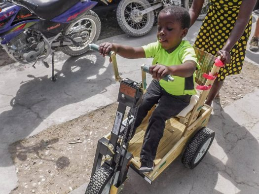 5-child-pet-cart-1024x768